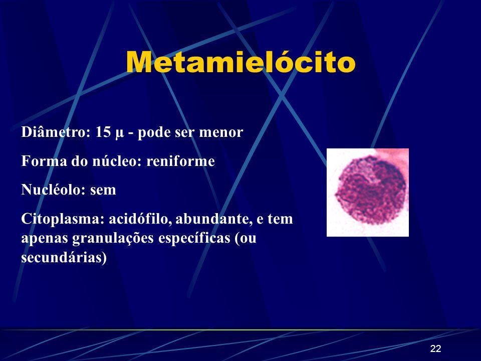 Metamielócito Diâmetro: 15 µ - pode ser menor