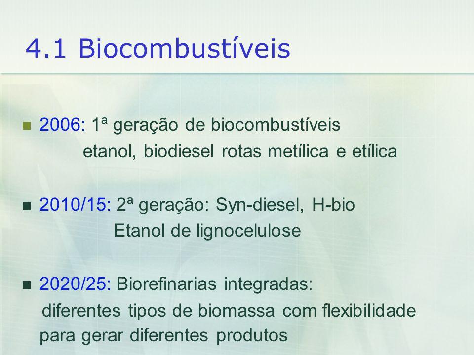 4.1 Biocombustíveis 2006: 1ª geração de biocombustíveis