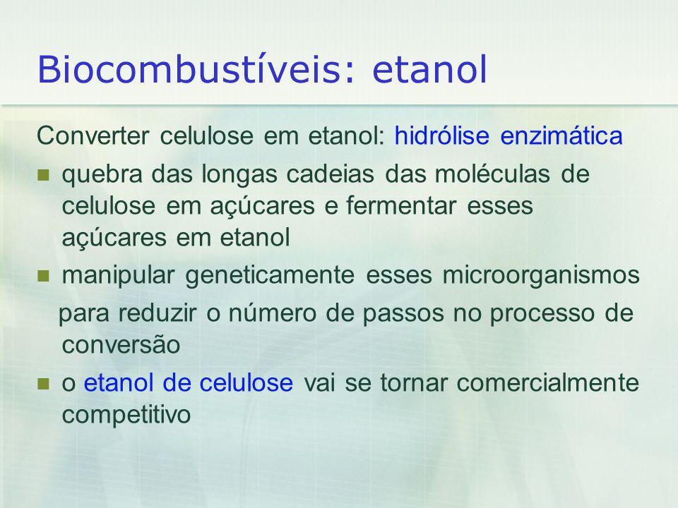 Biocombustíveis: etanol