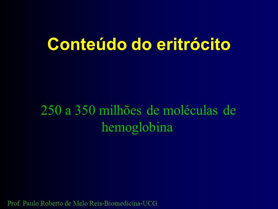 Conteúdo do eritrócito