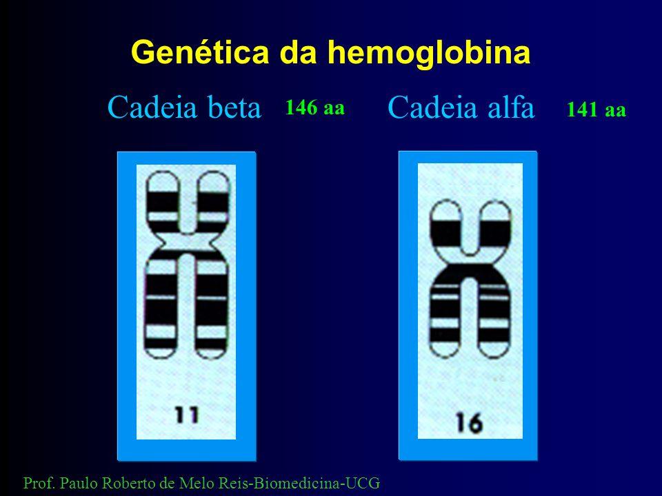 Genética da hemoglobina