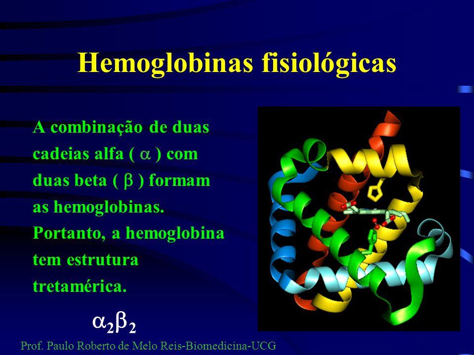 Hemoglobinas fisiológicas