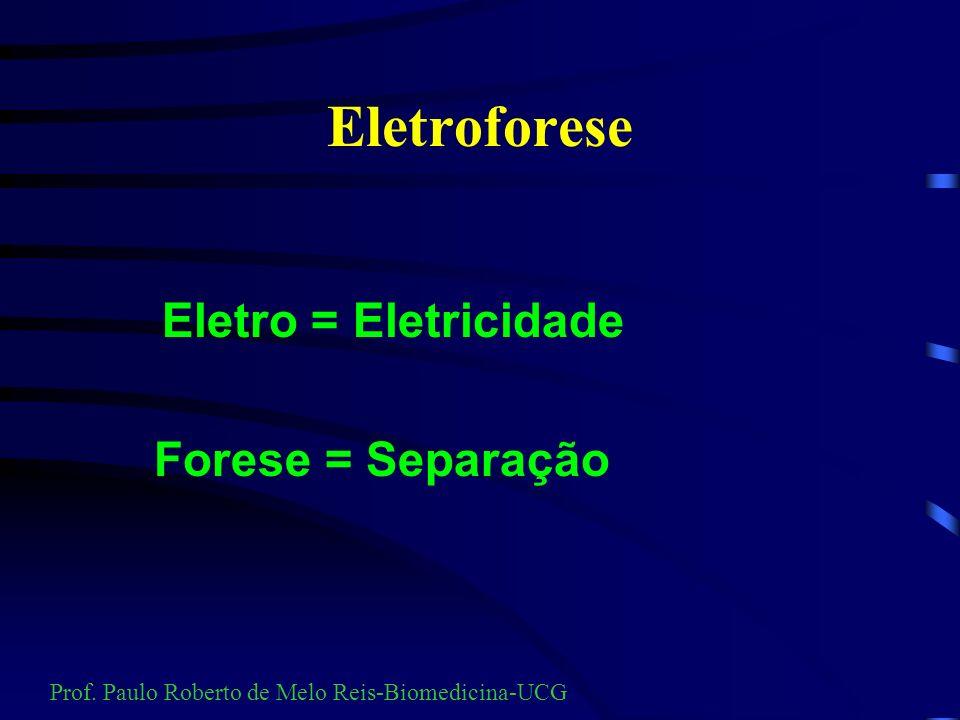 Eletroforese Eletro = Eletricidade Forese = Separação