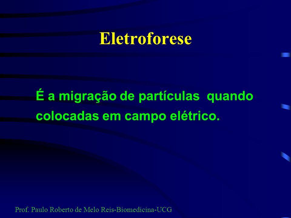 Eletroforese É a migração de partículas quando colocadas em campo elétrico.