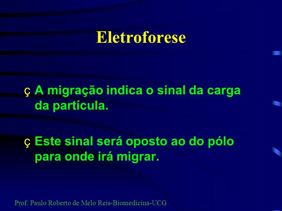 Eletroforese A migração indica o sinal da carga da partícula.
