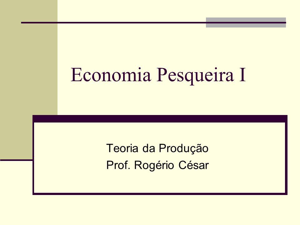 Teoria da Produção Prof. Rogério César
