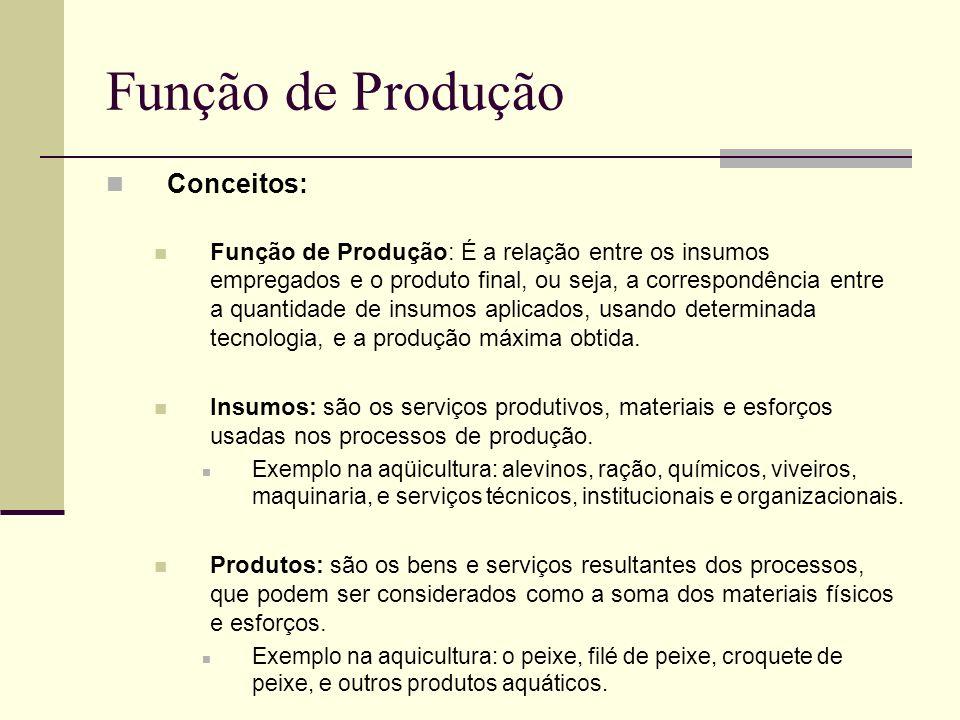 Função de Produção Conceitos: