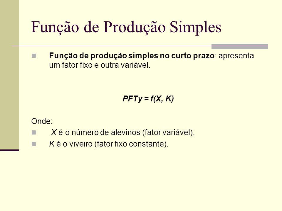 Função de Produção Simples