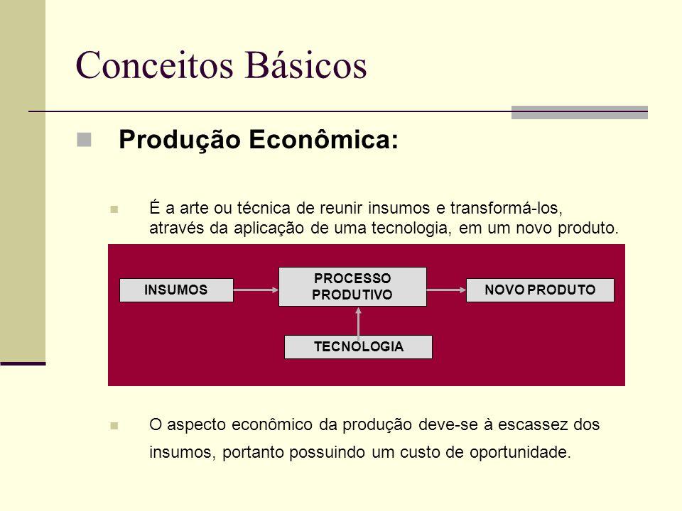 Conceitos Básicos Produção Econômica: