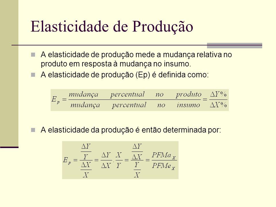 Elasticidade de Produção
