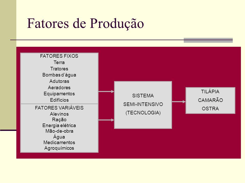 Fatores de Produção FATORES FIXOS Terra Tratores Bombas d'água