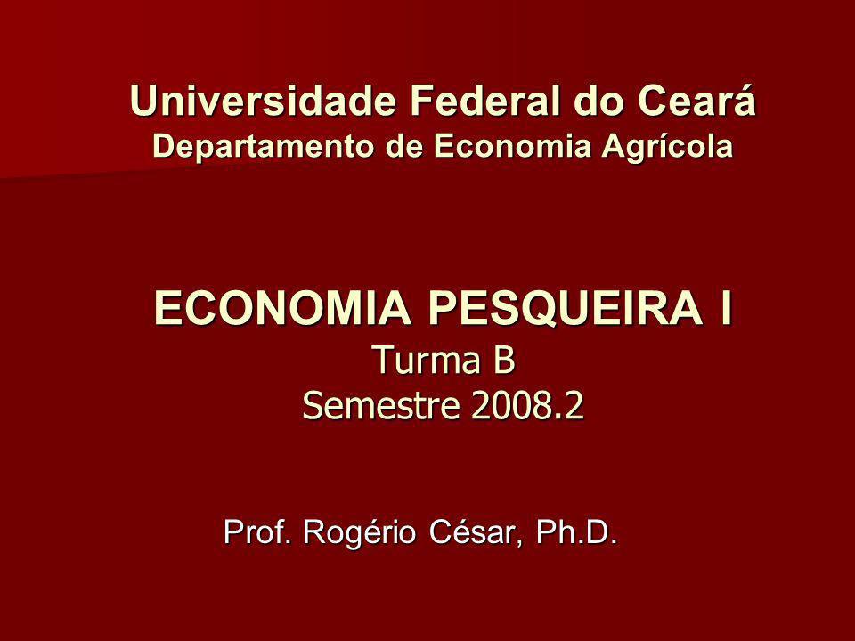 Universidade Federal do Ceará Departamento de Economia Agrícola ECONOMIA PESQUEIRA I Turma B Semestre 2008.2