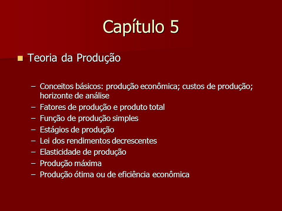 Capítulo 5 Teoria da Produção
