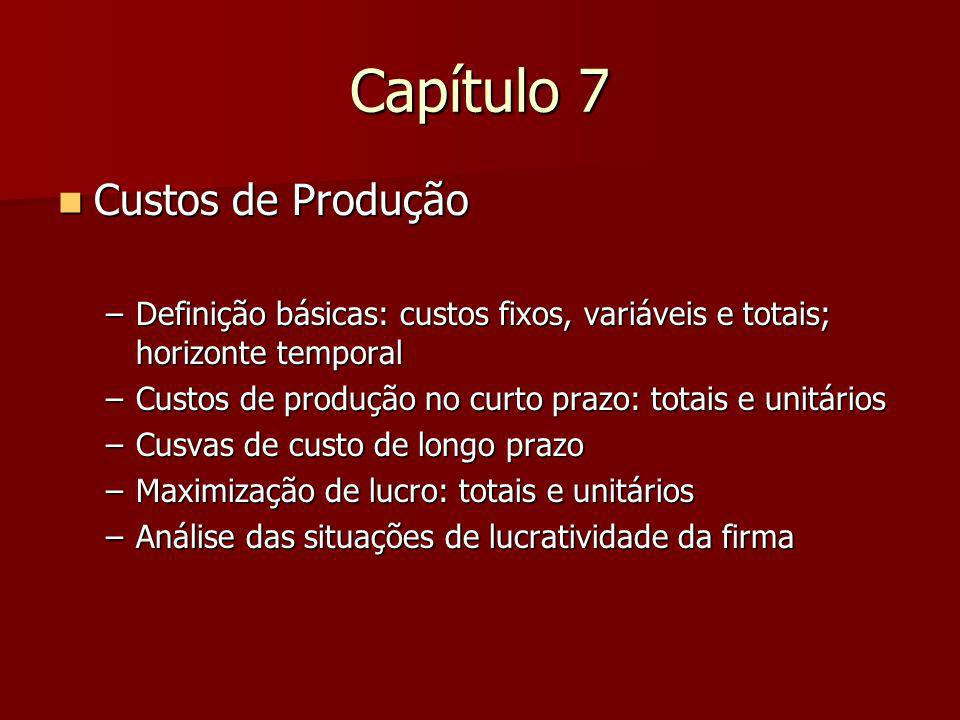 Capítulo 7 Custos de Produção