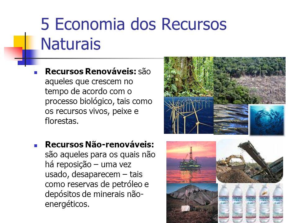 5 Economia dos Recursos Naturais