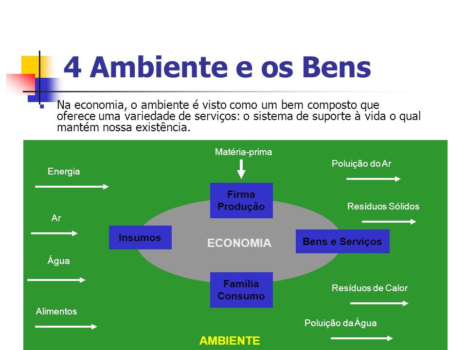 4 Ambiente e os Bens