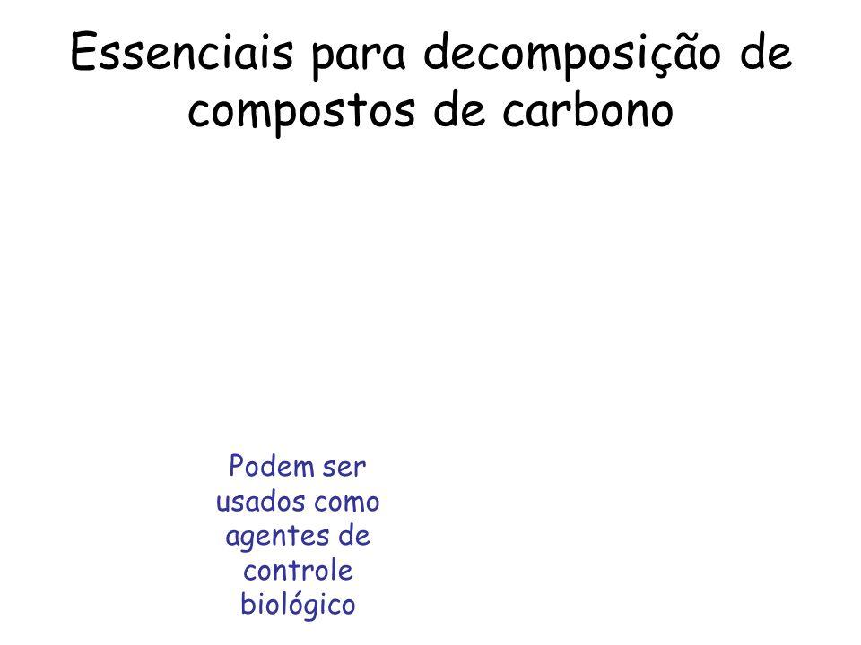 Essenciais para decomposição de compostos de carbono