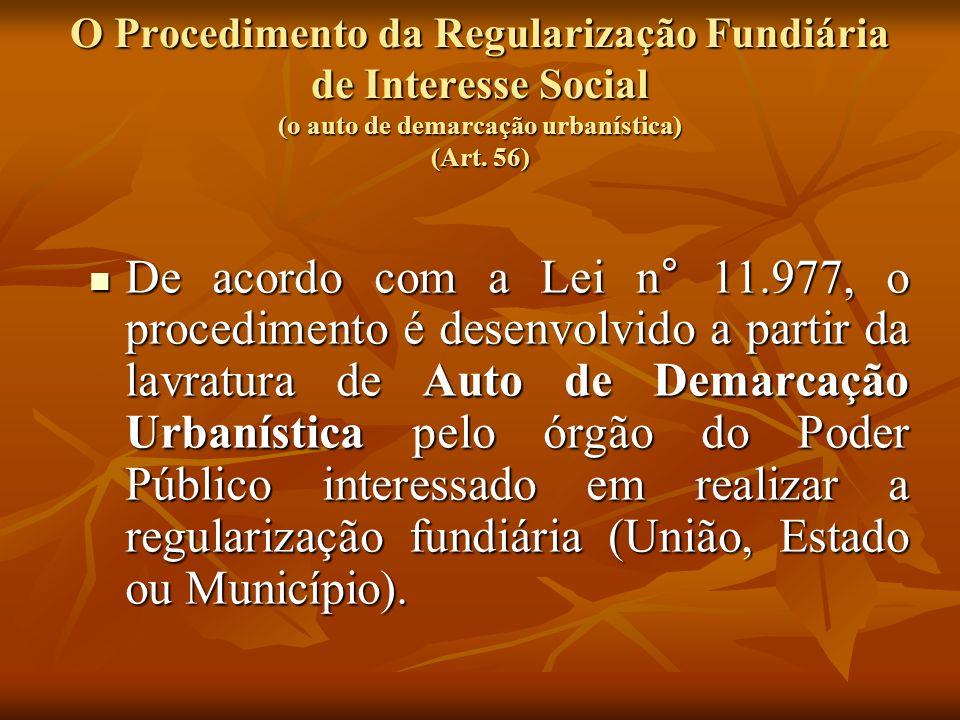 O Procedimento da Regularização Fundiária de Interesse Social (o auto de demarcação urbanística) (Art. 56)