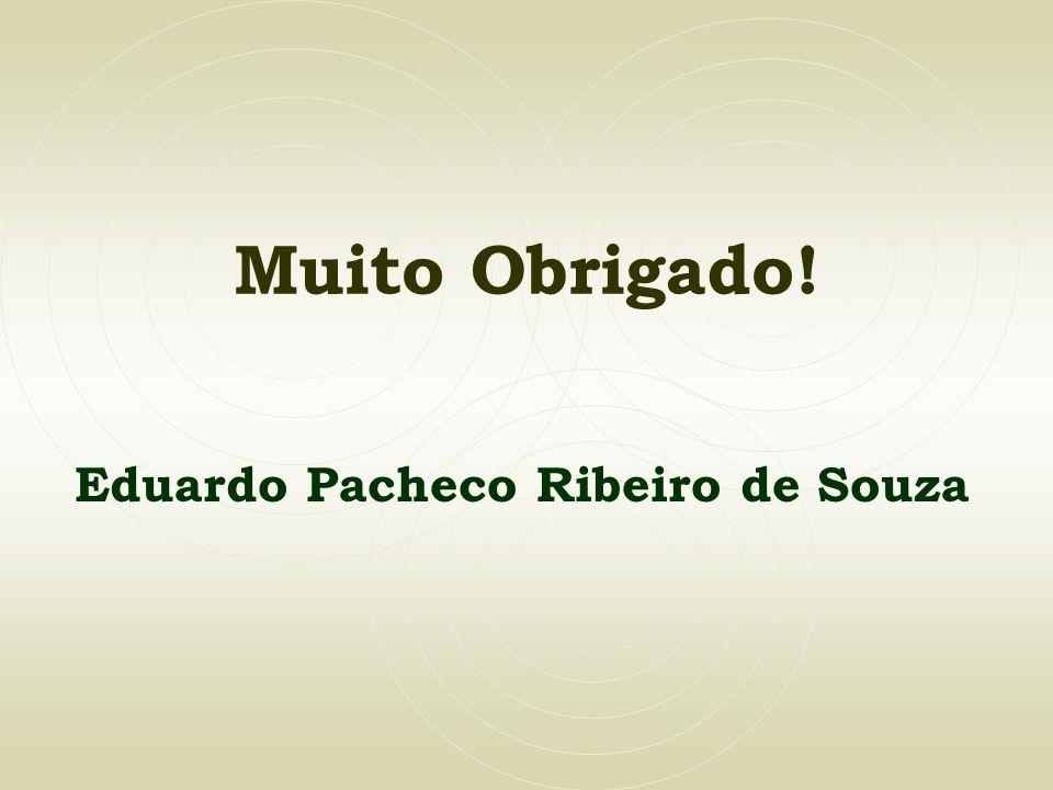 Eduardo Pacheco Ribeiro de Souza
