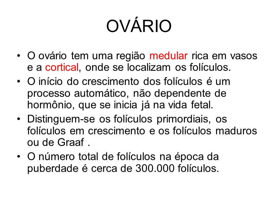 OVÁRIO O ovário tem uma região medular rica em vasos e a cortical, onde se localizam os folículos.