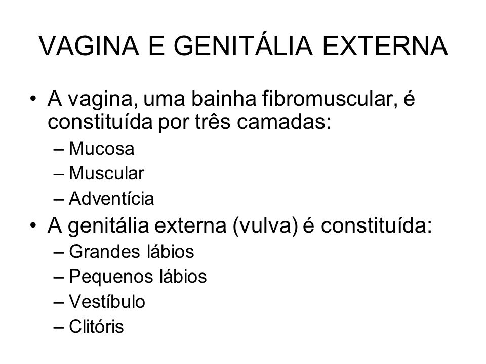 VAGINA E GENITÁLIA EXTERNA