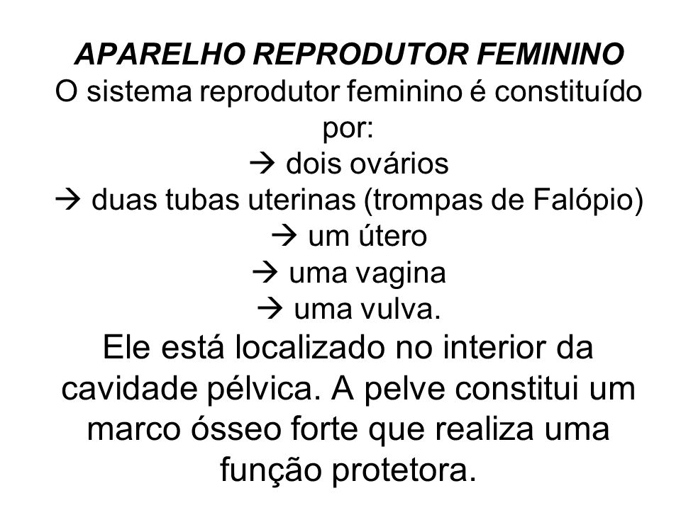 APARELHO REPRODUTOR FEMININO O sistema reprodutor feminino é constituído por:  dois ovários  duas tubas uterinas (trompas de Falópio)  um útero  uma vagina  uma vulva.