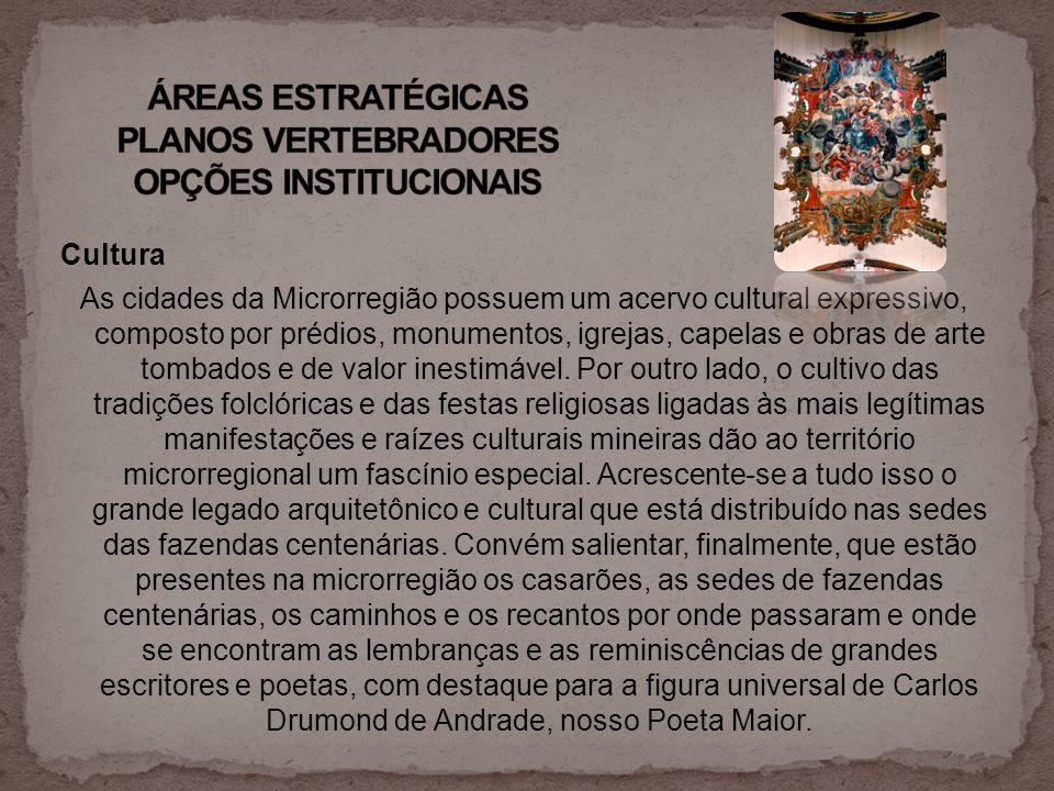 ÁREAS ESTRATÉGICAS PLANOS VERTEBRADORES OPÇÕES INSTITUCIONAIS