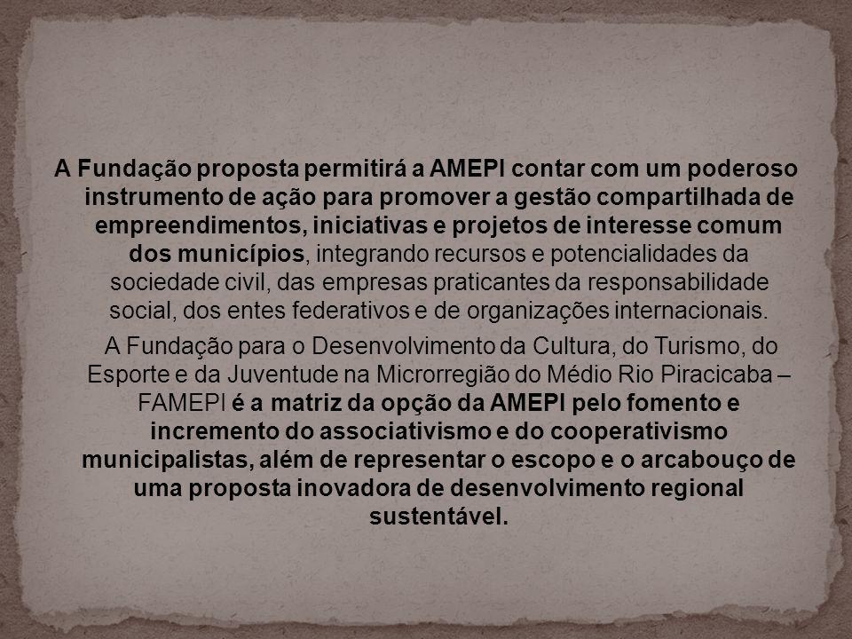 A Fundação proposta permitirá a AMEPI contar com um poderoso instrumento de ação para promover a gestão compartilhada de empreendimentos, iniciativas e projetos de interesse comum dos municípios, integrando recursos e potencialidades da sociedade civil, das empresas praticantes da responsabilidade social, dos entes federativos e de organizações internacionais.