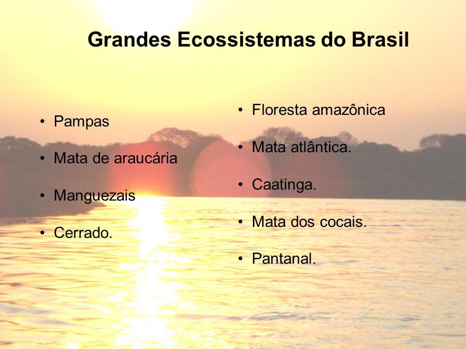 Grandes Ecossistemas do Brasil