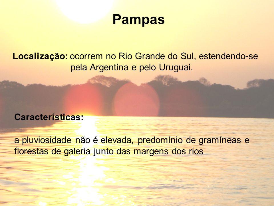 Pampas Localização: ocorrem no Rio Grande do Sul, estendendo-se