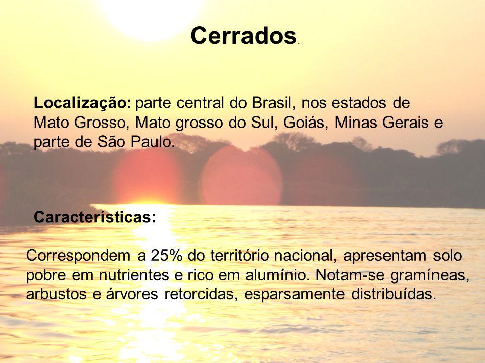 Cerrados. Localização: parte central do Brasil, nos estados de