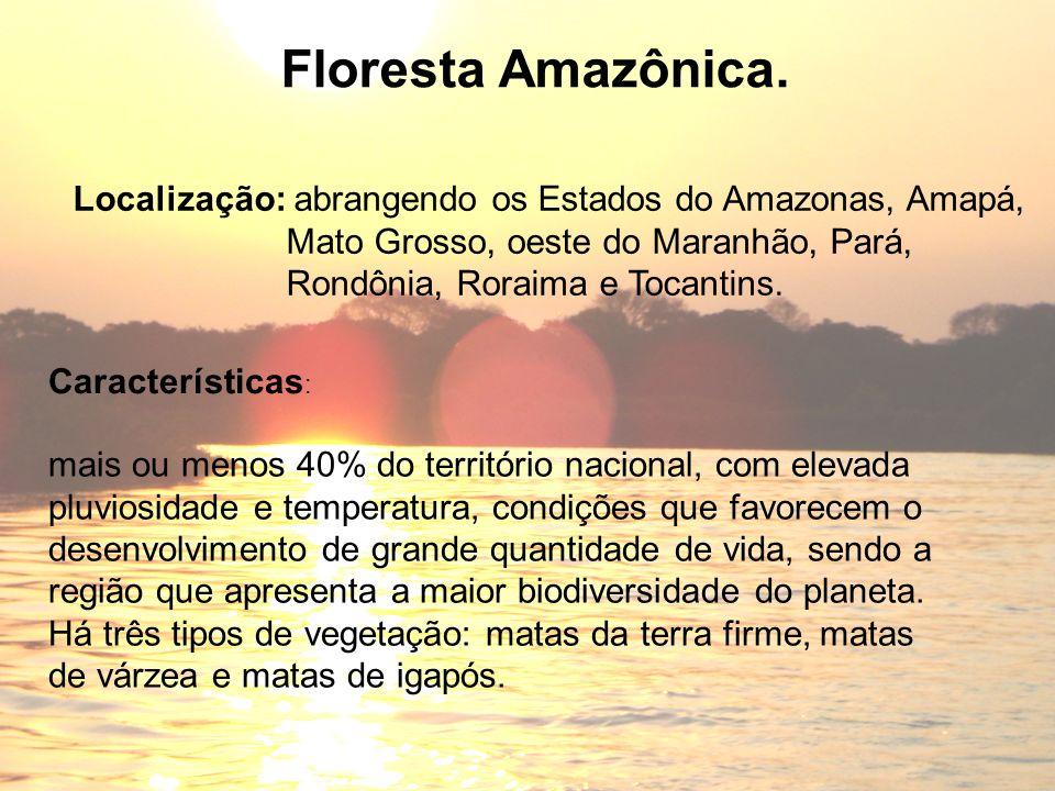 Floresta Amazônica. Localização: abrangendo os Estados do Amazonas, Amapá, Mato Grosso, oeste do Maranhão, Pará,