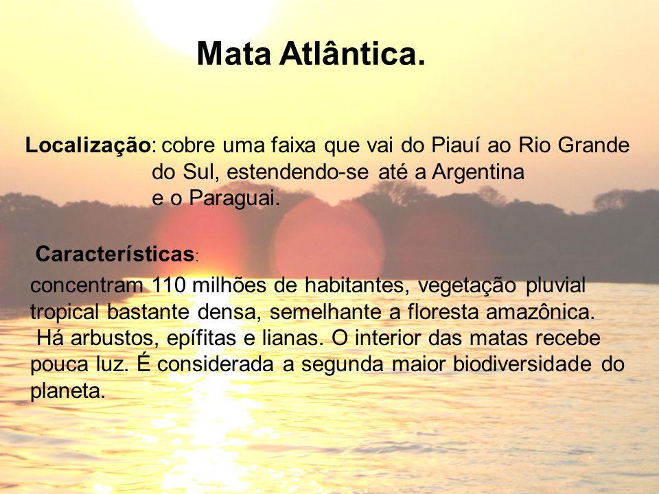 Mata Atlântica. Localização: cobre uma faixa que vai do Piauí ao Rio Grande. do Sul, estendendo-se até a Argentina.