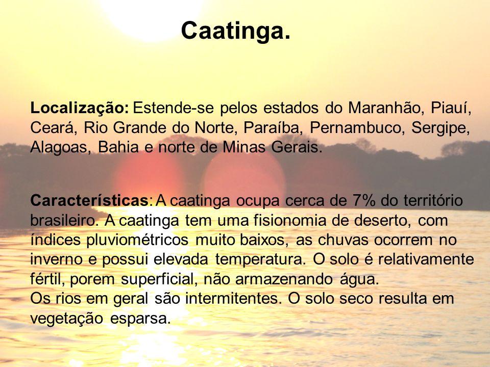 Caatinga. Localização: Estende-se pelos estados do Maranhão, Piauí,
