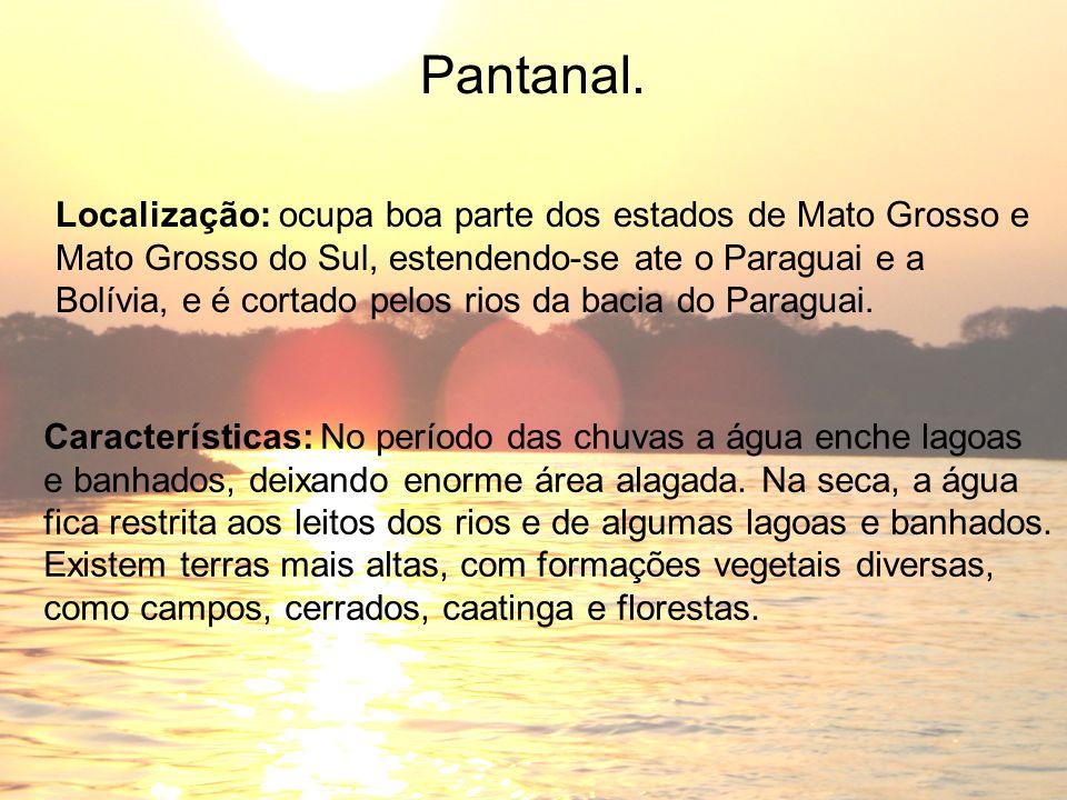 Pantanal. Localização: ocupa boa parte dos estados de Mato Grosso e