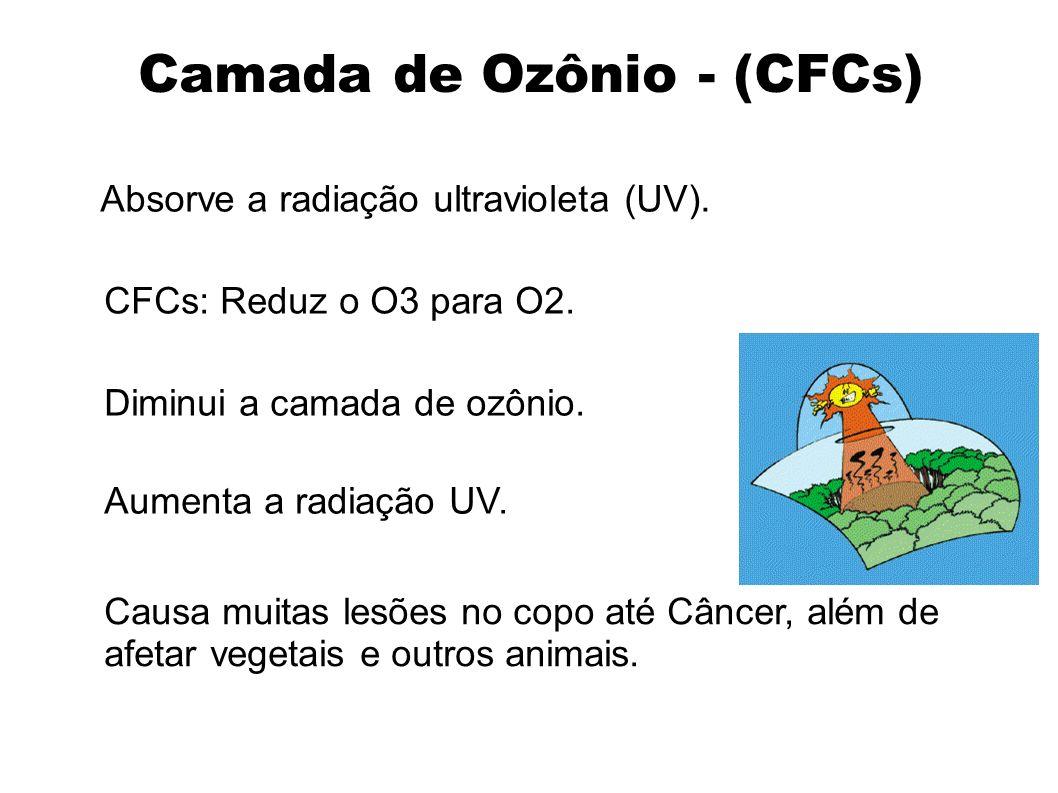 Camada de Ozônio - (CFCs)