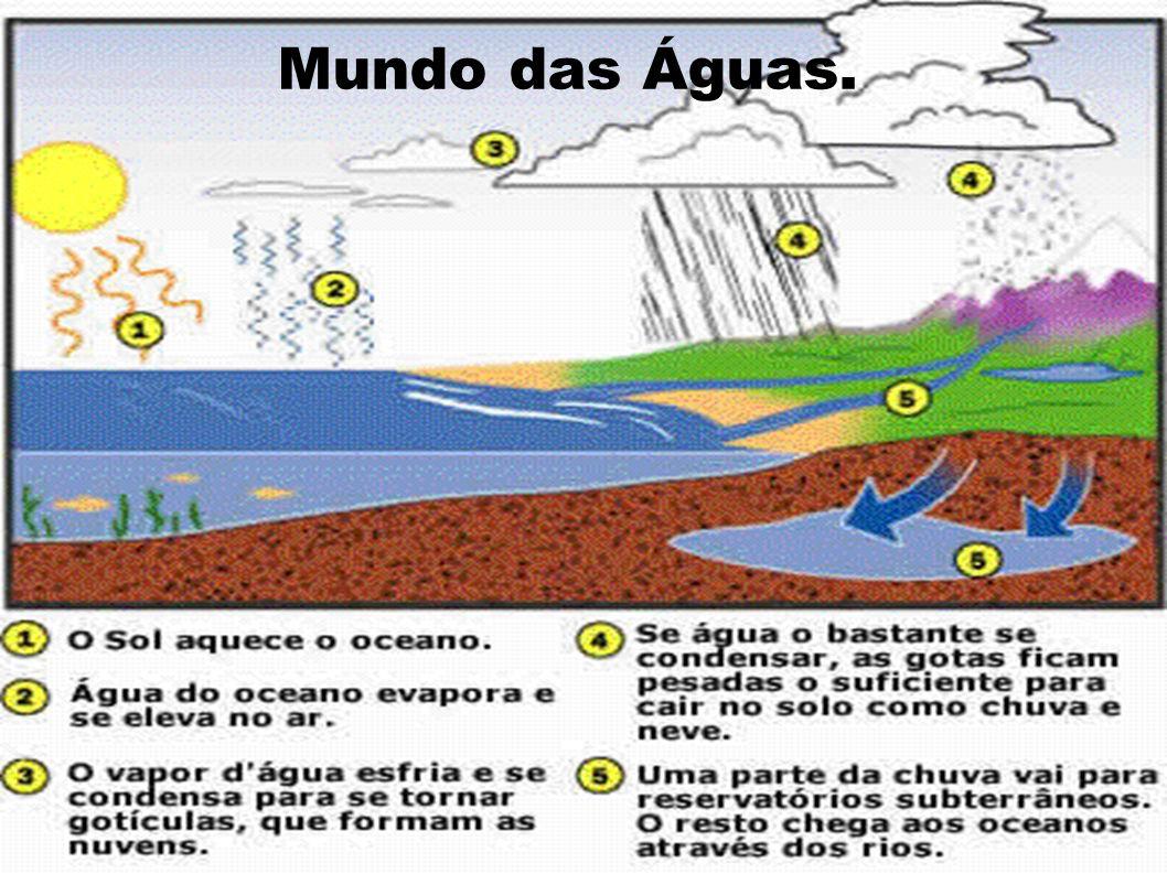 Mundo das Águas.