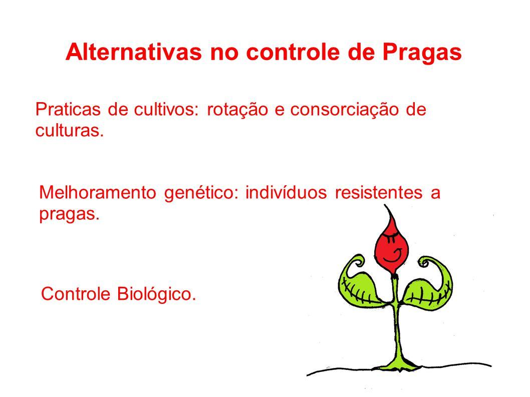 Alternativas no controle de Pragas