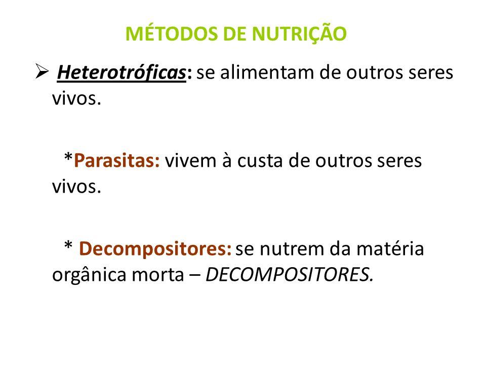 MÉTODOS DE NUTRIÇÃO Heterotróficas: se alimentam de outros seres vivos. *Parasitas: vivem à custa de outros seres vivos.