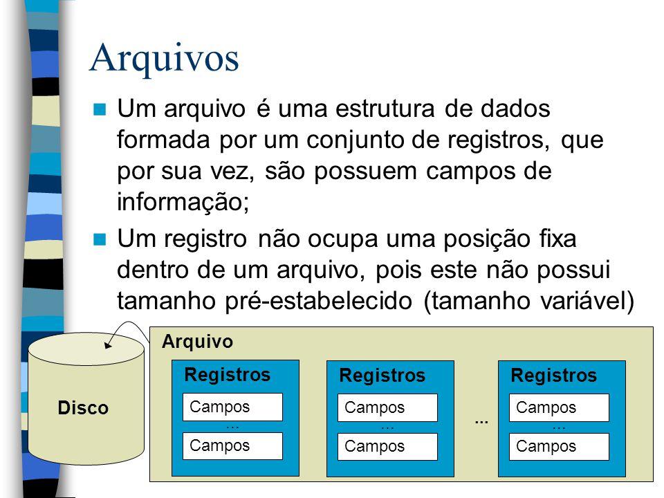 Arquivos Um arquivo é uma estrutura de dados formada por um conjunto de registros, que por sua vez, são possuem campos de informação;