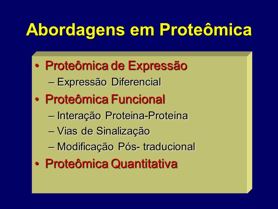 Abordagens em Proteômica