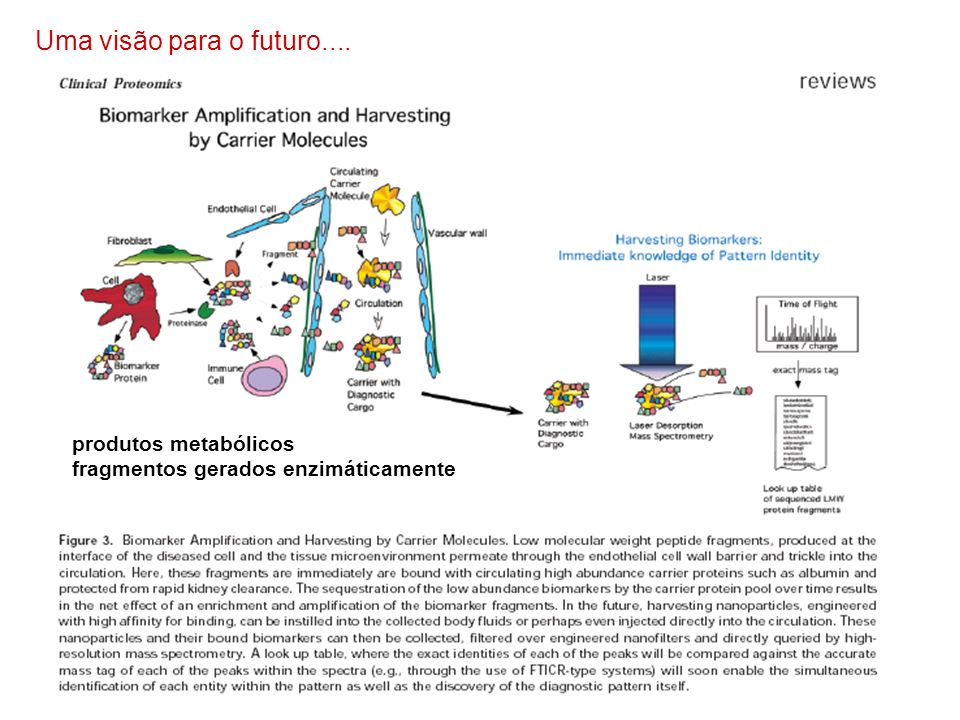 Uma visão para o futuro.... produtos metabólicos