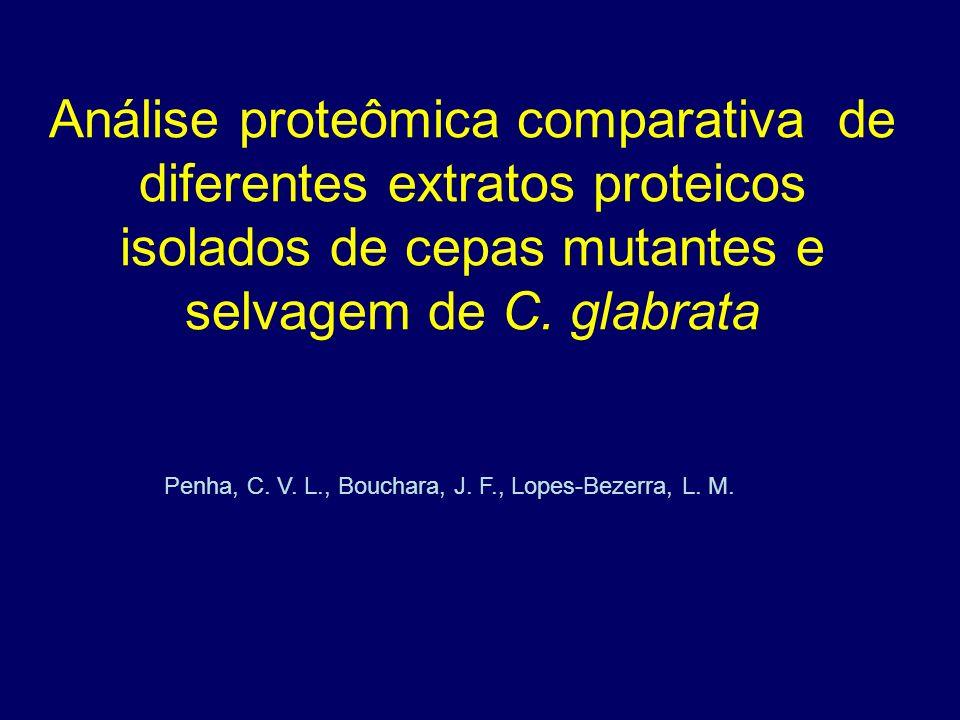 Penha, C. V. L., Bouchara, J. F., Lopes-Bezerra, L. M.