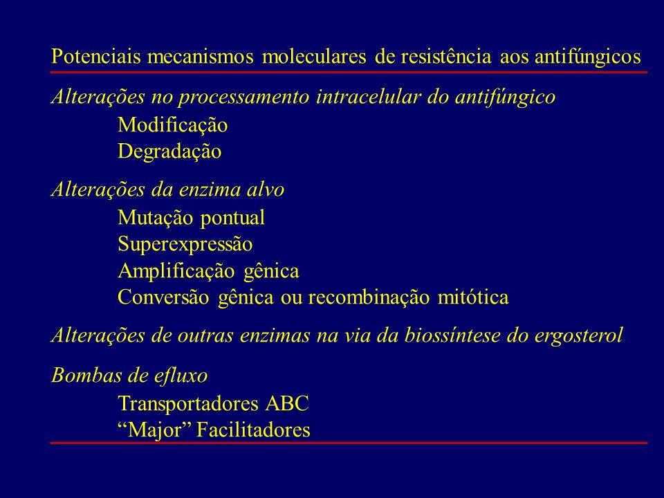 Potenciais mecanismos moleculares de resistência aos antifúngicos