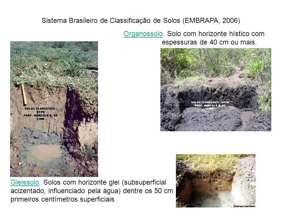 Sistema Brasileiro de Classificação de Solos (EMBRAPA, 2006)