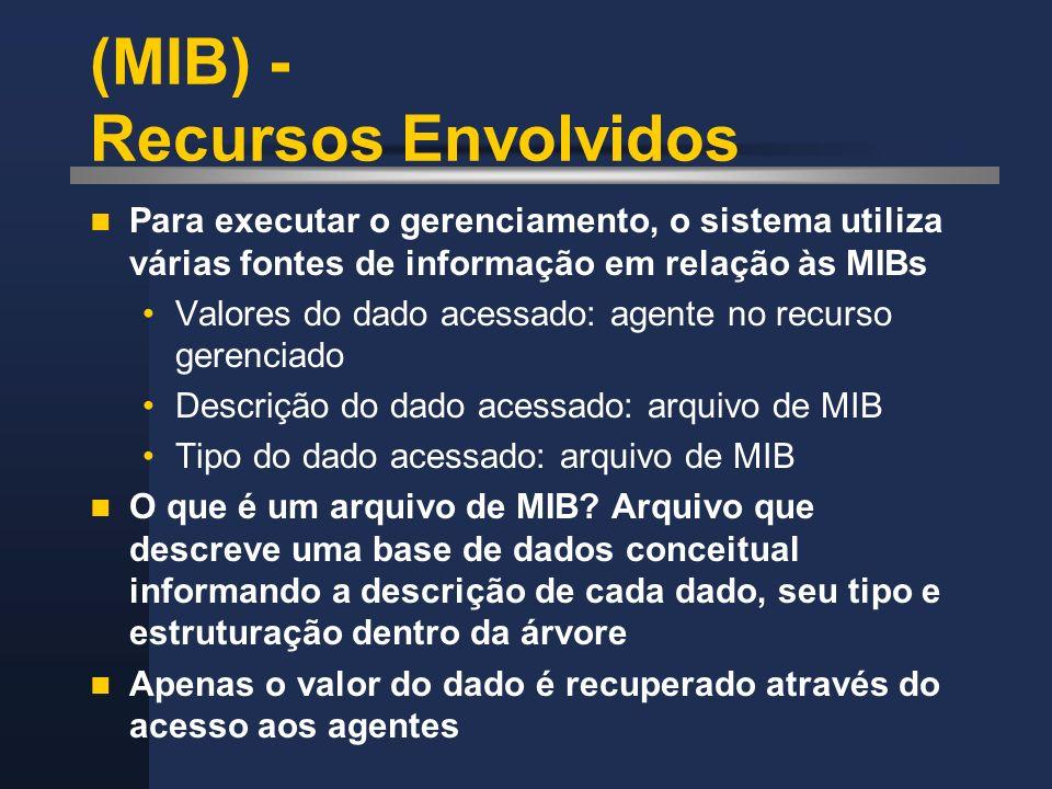 (MIB) - Recursos Envolvidos