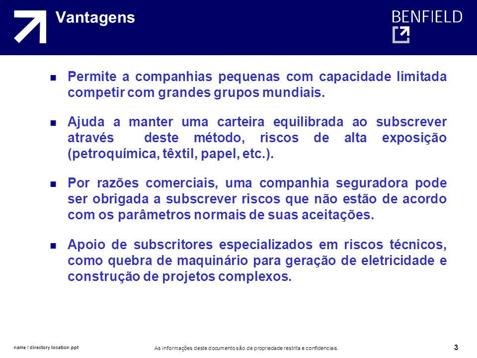 VantagensPermite a companhias pequenas com capacidade limitada competir com grandes grupos mundiais.
