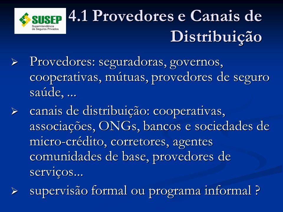 4.1 Provedores e Canais de Distribuição