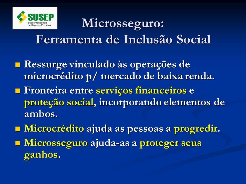 Microsseguro: Ferramenta de Inclusão Social