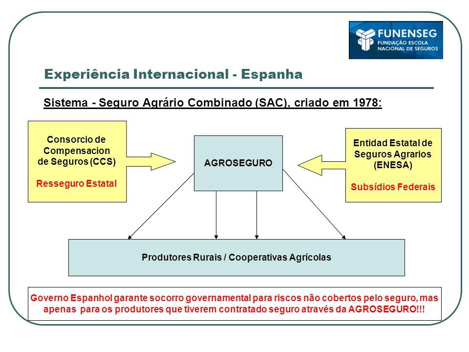 Experiência Internacional - Espanha